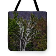 Life's A Birch No.1 Tote Bag