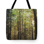 Light Among The Trees Vertical Tote Bag