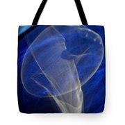 Light And Blue Disc No.106, Thu--17sep2015 Tote Bag