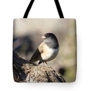 Light And Dark Of A Junco Tote Bag