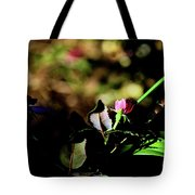 Light And Shadow In The Garden Tote Bag
