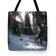 Light And Shadow On A Snowy Landscape Tote Bag