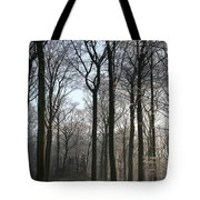 Light And Swadows Tote Bag
