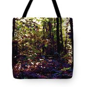 Light And Trees Wcsa  Tote Bag