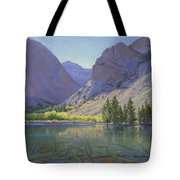 Light At Parker Lake Tote Bag
