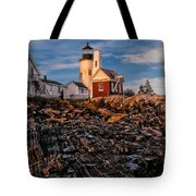 Light At Pemaquid Point Tote Bag