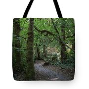 Light At The End Of The Path Tote Bag