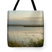 Light Falling Softly On The Marsh Tote Bag