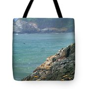 Light House And Sea Lions Tote Bag