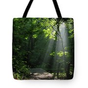 Light II Tote Bag