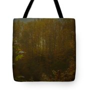Light In Autumn Tote Bag