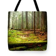 Light In The Forest Tote Bag by Idaho Scenic Images Linda Lantzy