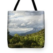 Light Of Sunset Tote Bag