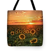 Light Of The Plains Tote Bag