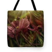 Light On The Cosmos Tote Bag