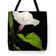 Light Out Of The Dark Tote Bag