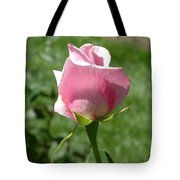 Light Pink Rose Close-up Tote Bag