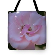 Light Pink Rose Tote Bag