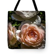 Light Pink Roses Tote Bag