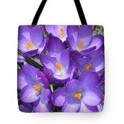 Light Purple Tote Bag
