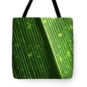Light Shining Through Palm Frond Tote Bag