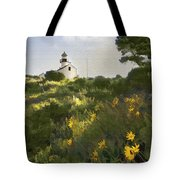 Lighthouse Daisies Tote Bag
