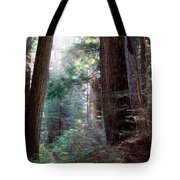 Lighting The Path Tote Bag