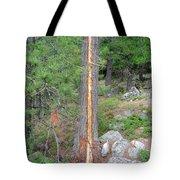 Lightning Strike On Tree Tote Bag