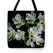 Lights In The Darkness Tote Bag