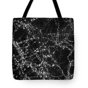 Lights In The Trees Tote Bag