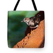 Lil Bird Tote Bag
