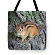 Lil Chipmunk Tote Bag