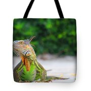 Lil Iguana Tote Bag