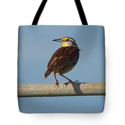 Lil Meadowlark Tote Bag