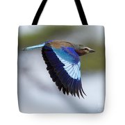 Lilac-breasted Roller-signed Tote Bag