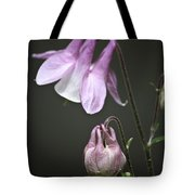 Lilac Columbine 3 Tote Bag