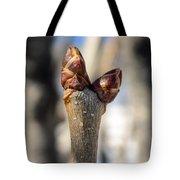 Lilac Leaf Buds Tote Bag