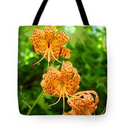 Lilies Art Tiger Lily Flowers Canvas Prints Floral Baslee Troutman Tote Bag