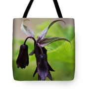 Lilies Of Brown Tote Bag