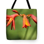 Lilies On Fire Tote Bag