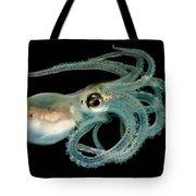 Lilliput Longarm Octopus Tote Bag