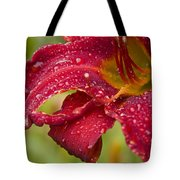 Lilly After Rain Tote Bag