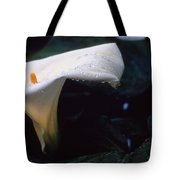 Lilly Of The Tears Tote Bag