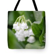 Lilly Of The Valley Tote Bag