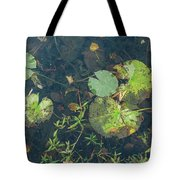 Lilly Pad Close Up  Tote Bag