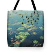 Lilly Pad In Pond  Tote Bag