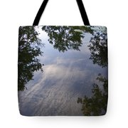 Lilly Pad Reflections Tote Bag