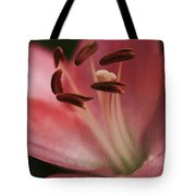Lilly Pink Craquelure Tote Bag