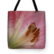 Lilly Pink Lilly Tote Bag