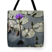 Lilly Pond  Tote Bag